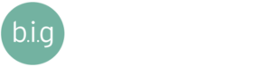 Baron Insurance Group - Logo 800 White